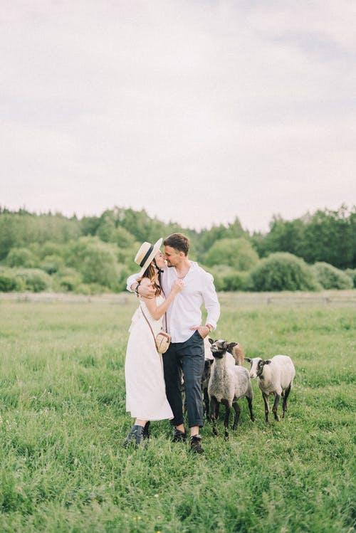 pár na louce a ovc